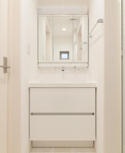 鏡裏収納付三面鏡の洗面台